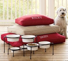 Pottery Barn Pet Collection - Dog Milk