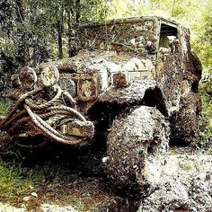 Mondays feelin a little heavy on your soul? Get out in the mud for a little.
