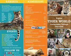 San Diego Zoo Brochure On Behance Design Zoo Pinterest San