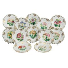Set of 12 19th C. Handpianted Botanical Cabinet/Dessert Plates | 1stdibs.com