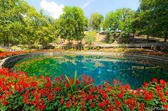 Blue Springs, Arkansas