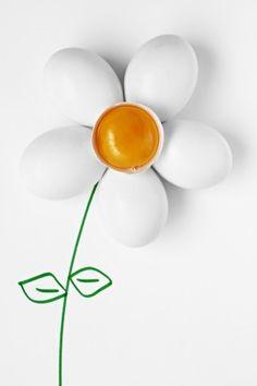 Daisy eggs by Ruben Perez (fris)