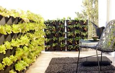 Vertical balcony gardens privacy fence ideas