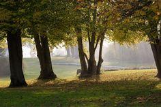 Höstlig park.