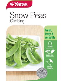 A climbing variety producing crisp, sweet pods that can be eaten whole. Snow Peas, Vegetable Garden, Celery, Climbing, Seeds, Tasty, Fresh, Vegetables, Food