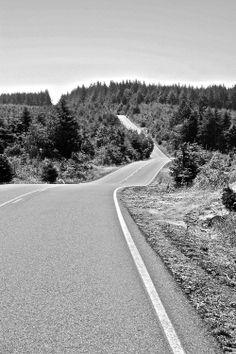 prestoimages:  Route 101, Oregon, USA © Tom Prestwich, 2008
