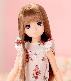 CCSgirl 14NY ruruko-- I just bought one!!