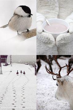 Entdeckungsreise durch die #Winter ... einfach los #Wandern und sich öffnen für die Wunder der #Natur go for a long stroll in winterwonderland... nature at its best!  winter white by the style files, via Flickr