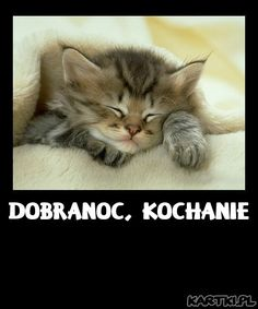 Dobranoc, Kochanie (Good night, sweetheart.)