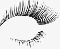 Curl lashes, Curl, Pretty, Eyelash PNG Image and Clipart Curl Lashes, Big Lashes, House Of Lashes, Rodan And Fields, Lash Paradise Loreal, Lash Intensity Mary Kay, Lash Quotes, Lashes Logo, Ardell Lashes