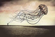 Oceanopraphies - traumhafte fliegende Meerestiere