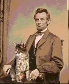16th President - Abraham Lincoln -with Tabby. Tabby was the first white house cat.