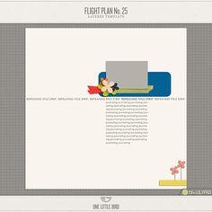 Flight Plan No. 25   One Little Bird