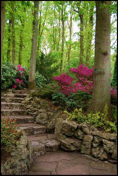 BG Stairs by Eirian-stock.deviantart.com on @deviantART