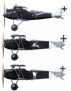 The middle Fokker DVII in the middle, with the stag, belongs Lt. Carl Degelow, commander of the black and white Jagdstaffel 40.