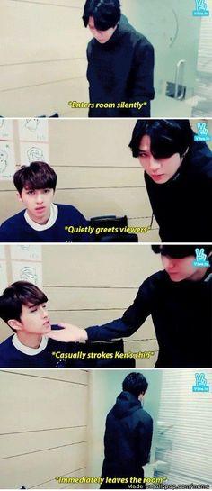 Leo (VIXX) - inspiration for Junah's personality Shinee, Ken Vixx, Jung Taekwoon, Funny Memes, Hilarious, Z Cam, Jellyfish Entertainment, Meme Center, Kpop Guys