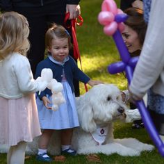 Princess Charlotte might have been missing Lupo when she was drawn to Moose the dog, who she proceeded to sit on!<br><br>Photo: © PA