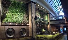 Thompson Hotel's Nico Salone adds eco-elegance with Omni Ecosystems Tapestry™