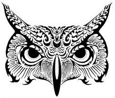 OWL by Goerke on DeviantArt