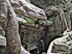 Son las fotografías de mis viajes: SON LAS FOTOGRAFIAS DE MIS VIAJES. Angkor Wat. Cam...