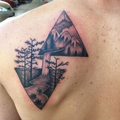 Mountain and forest in triangles