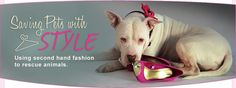 WearWoof - fantastic consignment shop with proceeds helping local animal organizations.
