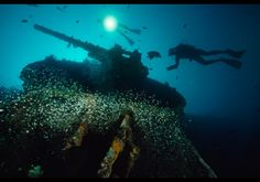 The SS President Coolidge hit underwater mines and sank off the coast of Vanuatu in the Pacific Ocean. All but two passengers survived the ordeal. Guns, cannons, Jeeps, chandeliers and a mosaic tile fountain can be found among the wreckage.