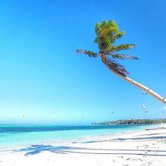 Hotels-live.com/cartes-virtuelles #MGWV #F4F #RT #KiteSurfing I've always wanted to try this -Maybe one day... #bulabog #beach #Boracay #boracayisland #Philippines ___ #travellersplanet #travellersplanetboracay #latergram by travellersplanet https://www.instagram.com/p/BDAtIOXKLL6/