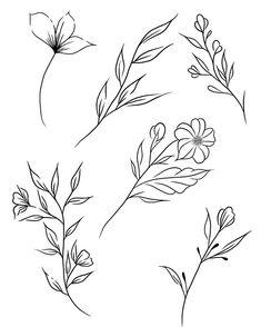 Roślinki do wzięcia Botanical Line Drawing, Floral Drawing, Botanical Drawings, Line Art Tattoos, Mini Tattoos, Small Tattoos, Doodle Drawings, Doodle Art, Tattoo Drawings