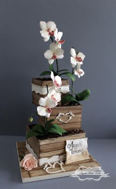 Orchids for my Mum! by Angela Penta