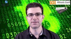 Bitcoin Cash & Ledger Nano S. How do I use the BCH wallet?