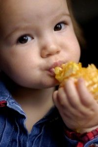 Great meals ideas for toddlers.