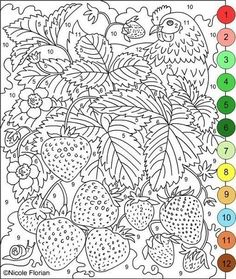 paint by numbers color by numbers colouring pages free coloring coloring books image search colors strawberry color raspberries