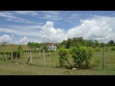 Venta de Lote con uso comercial en carmen de apicala - Tolima