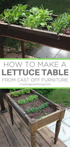 How to start growing lettuce for salads from a DIY raised bed upcycled from an old desk. This cheap way to start growing lettuce and other vegetables in your backyard or on your deck makes it easy to start your own garden inexpensively without having to plant it in ground. #raisedbed #gardening #raisedbedgardening