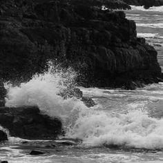 Ocean ♡
