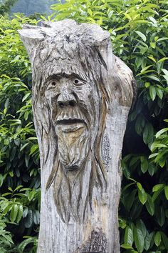 "Tree Spirit….NOT SO COMELY, BUT HE'S THE GUARDIAN OF THE TREES AT THE CEMETERY ""THIS IS IT FOLKS""……….ccp"