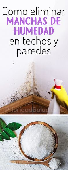 Como eliminar moho, manchas de humedad en techos y paredes Deep Cleaning Tips, House Cleaning Tips, Cleaning Hacks, Concrete Garden, Mind Blown, Clean House, Housekeeping, Good To Know, Helpful Hints