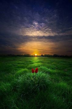 Beautiful Sunset, Beautiful Places, Beautiful Gif, Great Shots, Pics Art, Belle Photo, Pretty Pictures, Nature Photography, Scenery
