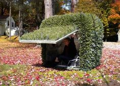 I tiny hideout that looks like a bush... I could totally make this work SHTF & Prepping Central.