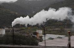 In località #Confini, tra Camporosso e Dolceacqua, verrà realizzato un innovativo impianto per la produzione di alghe a fini alimentari. #Imperia