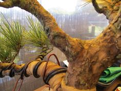 how to bend wood branches - Google Search