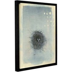 ArtWall Elena Ray Neutral Tone Nest Gallery-Wrapped Floater-Framed Canvas, Size: 24 x 32, Black