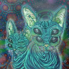 Stay Trippy by DotMap. Trip cats
