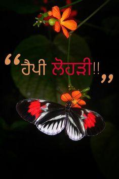 #Happy #Lohri - #Punjabi' Happy Lohri, Puns, Movie Posters, Movies, 2016 Movies, Film Poster, Films, Film, Movie Theater