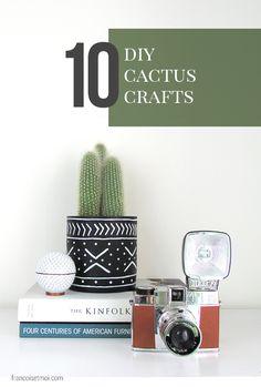 10 DIY Cactus Crafts for Home, Garden, and Fashion - Shrimp Salad Circus