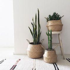 Pote de flores dobrável Palha Cestas de armazenamento Vaso Pendurado Armazenamento Jardineiros Organização - NewChic Móvel