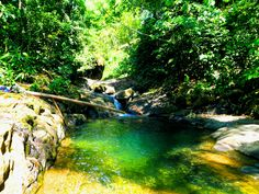 A tropical swimming hole in Uvita