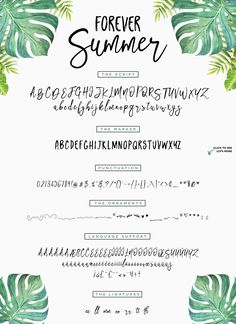 Forever Summer + Extras by Flycatcher Design on @creativemarket