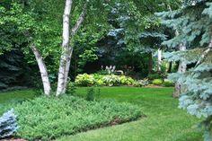 Conrad Art Glass & Gardens: Tree